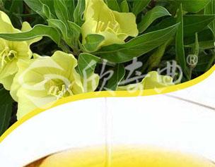 月见草油(Evening primrose oil)