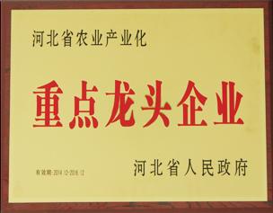 河北省重点龙头企业